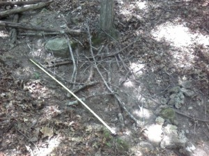 Dry stream bed with rock dam and sticks I tossed in.